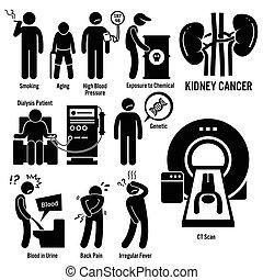 rein, cancer