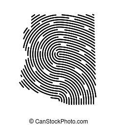 rempli, empreinte doigt, pattern-, vecteur, résumé, illustration, carte arizona