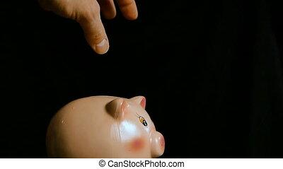 remplir, bank., porcin