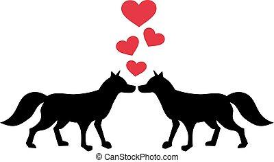 renard, amour, deux