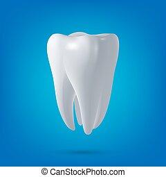 render., dentaire, santé, 3d, dent, vecteur, conception, element., concept, médecine