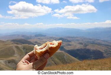 repos, mangé, après, montagnes, sandwich, pendant, randonnée