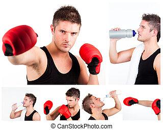 repos, ou, avoir, quoique, mâle, boxe, boxeur, collage