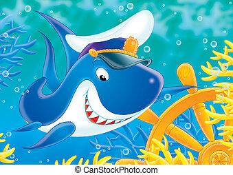 requin, capitaine