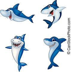 requin, ensemble, dessin animé, collection