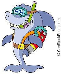 requin, plongeur sous-marine