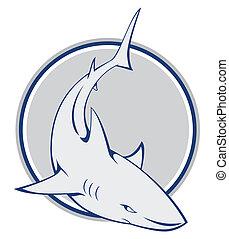 requin, symbole