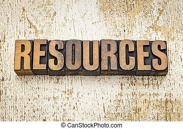 ressources, type, bois, mot