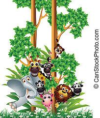 rigolote, dessin animé, animal, collection