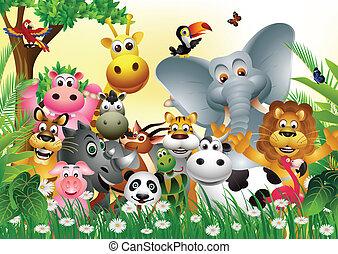 rigolote, dessin animé, animal