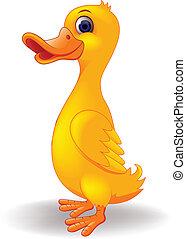 rigolote, dessin animé, canard