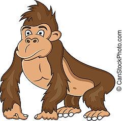rigolote, dessin animé, gorille