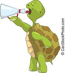rigolote, screaming., turtle.