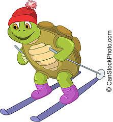 rigolote, skiing., turtle.