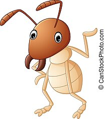 rigolote, termite, présentation, dessin animé