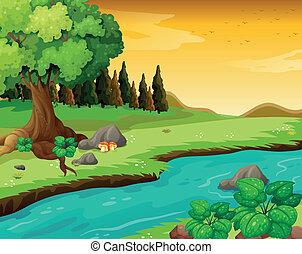 rivière, forêt, écoulement