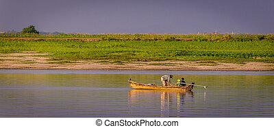 rivière, pêcheur, irrawaddy, myanmar