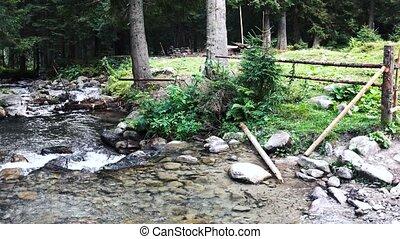 rivière, pierres, montagne, écoulement, forest.