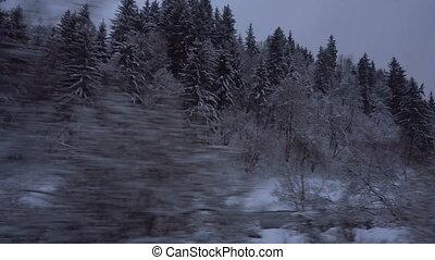 rivière, train, voyager, neigeux, bois
