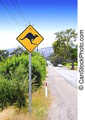 road., signe kangourou, croisement, long, australien