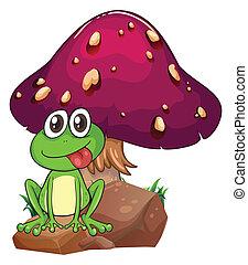 rocher, au-dessus, grenouille, dos, champignon