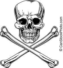 roger gai, crâne crâne
