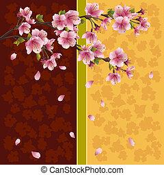 romantique, cerise, -, japonaise, arbre, sakura, fond