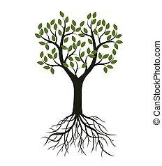 roots., forme, vecteur, arbre, illustration.