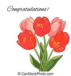 rose, bouquet, tulipes, illustration, arrière-plan., vecteur, blanc rouge