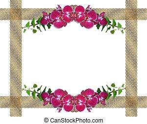 rose, frontière, lierre, orchidées