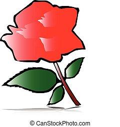 rose, illustration
