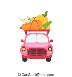 rose, mignon, jardin, nourriture, voiture, courge, livraison, expédition, devant, vecteur, illustration, vue, légumes frais, courgette