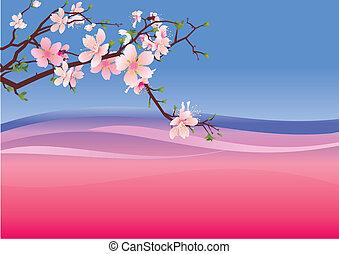 rose, sakura, toile de fond, violet