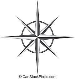 rose, vecteur, illustration, compas