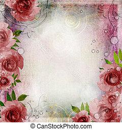 rose, vendange, set), 1, roses, arrière-plan vert, (
