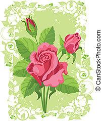 roses, carte