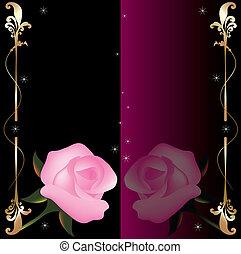 roses roses, résumé, vecteur, fond