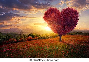 rouges, arbre, forme coeur