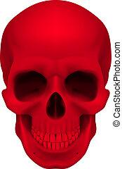 rouges, crâne
