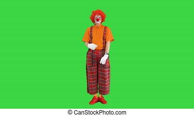 rouges, très, timide, devant, quelqu'un, clown, écran, vert, chroma, key., être