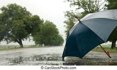 route, pluie, parapluie, sous