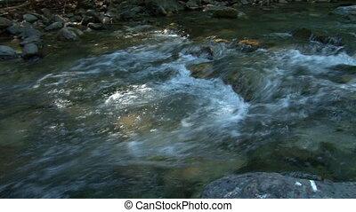 ruisseau, ombreux, inclinaison, moule
