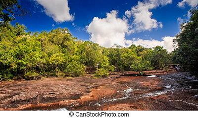 ruisseau, peu profond, fluxs, lumière soleil, sous, transparent, forêt