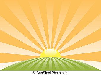 rural, résumé, soleil, paysage, vecteur, levée