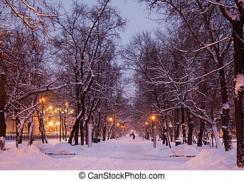 russia., evening., hiver, moscow.