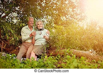 séance, couple, arbre, mûrir, coffre, aimer