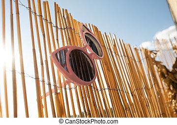 sélectif, day., bambou, oeil, conception, foyer, lunettes soleil, pendre, chat, barrière, été