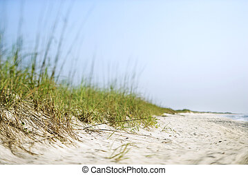 sable, dune.