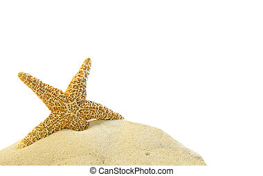 sable, etoile mer, colline, unique