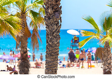 sable plage, paume, fond, barbouillage